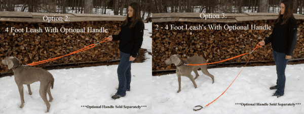 A four foot leash with handle