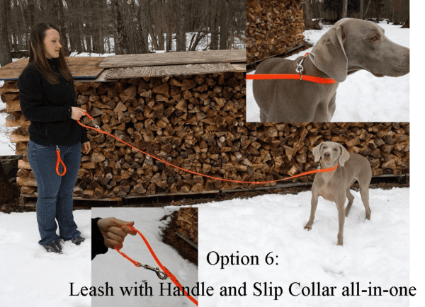 An all-in-one leash, handle, and slip collar