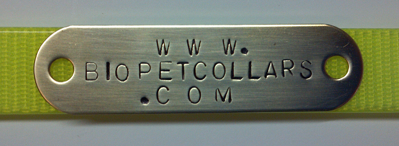 A brass nameplate for a yellow collar
