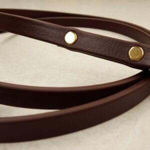 A brown leash