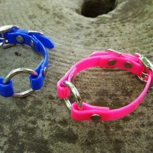 A blue and pink pet collars