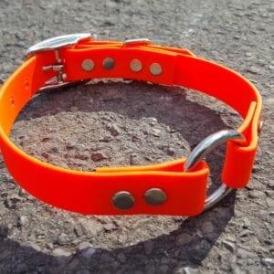 An orange BioThane collar